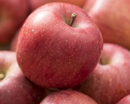 訳ありリンゴ.jpg