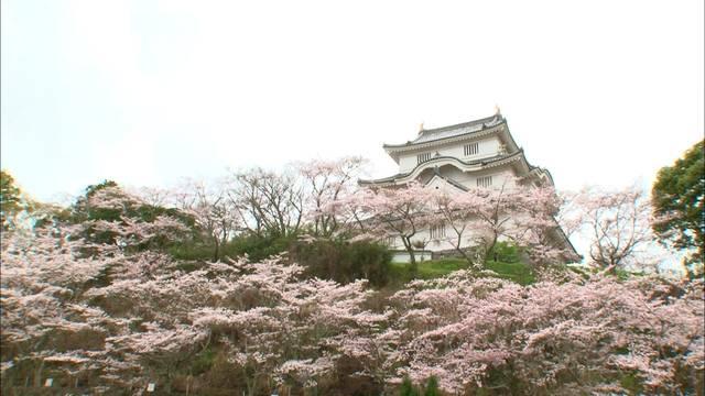 大多喜城(引き)2.jpg
