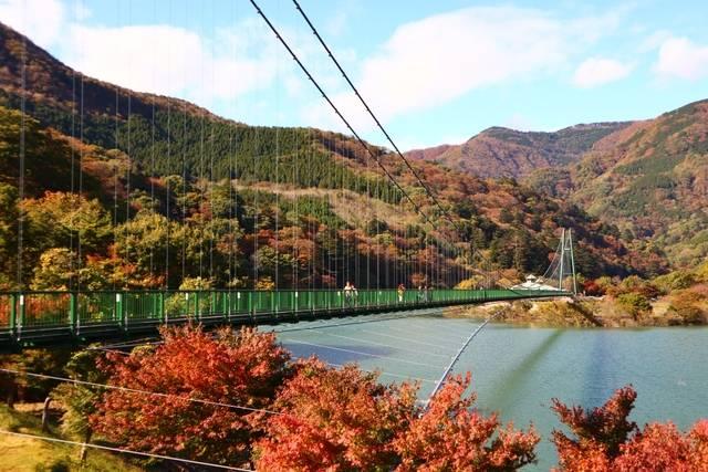 もみじ谷大吊橋.jpg