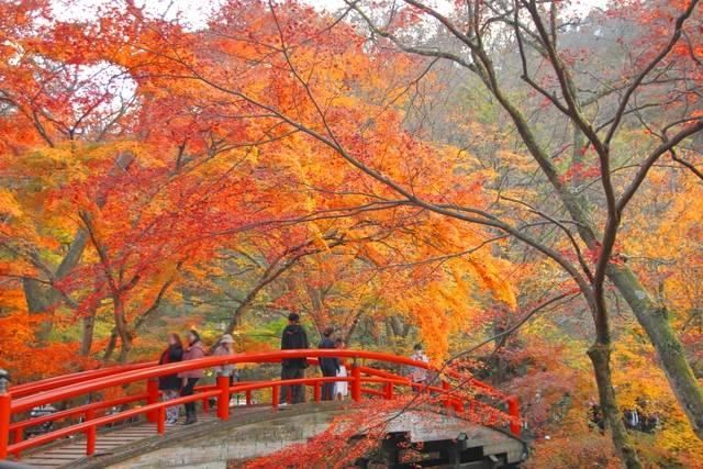 伊香保温泉の河童橋.jpg