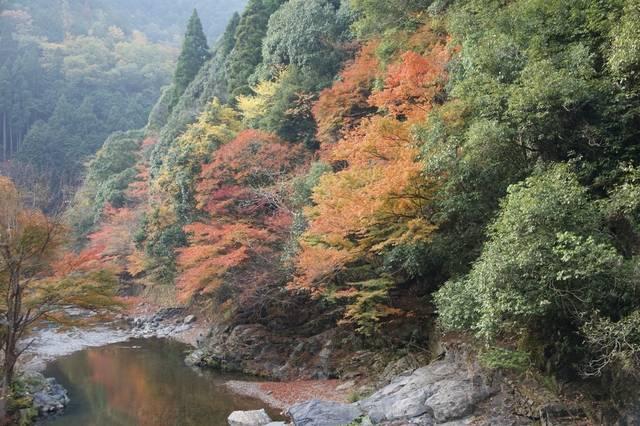 嵐山渓谷.jpg