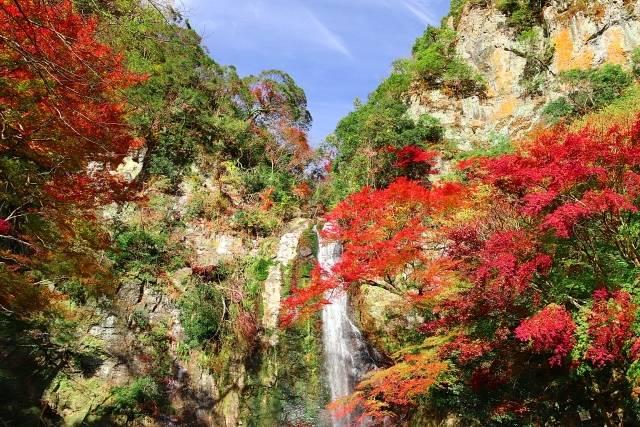 箕面大滝・紅葉